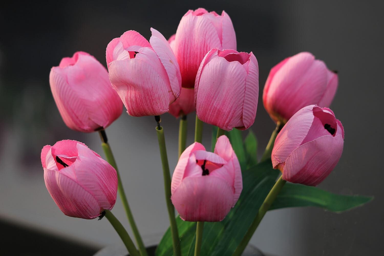 Hurtownia sztucznych kwiatów