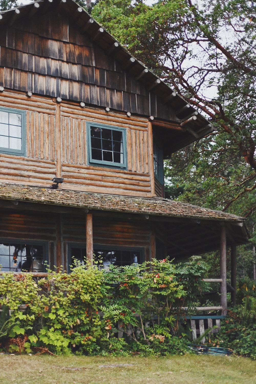 Jak budują domy drewniane